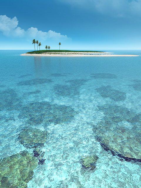 My.immersioni tropici